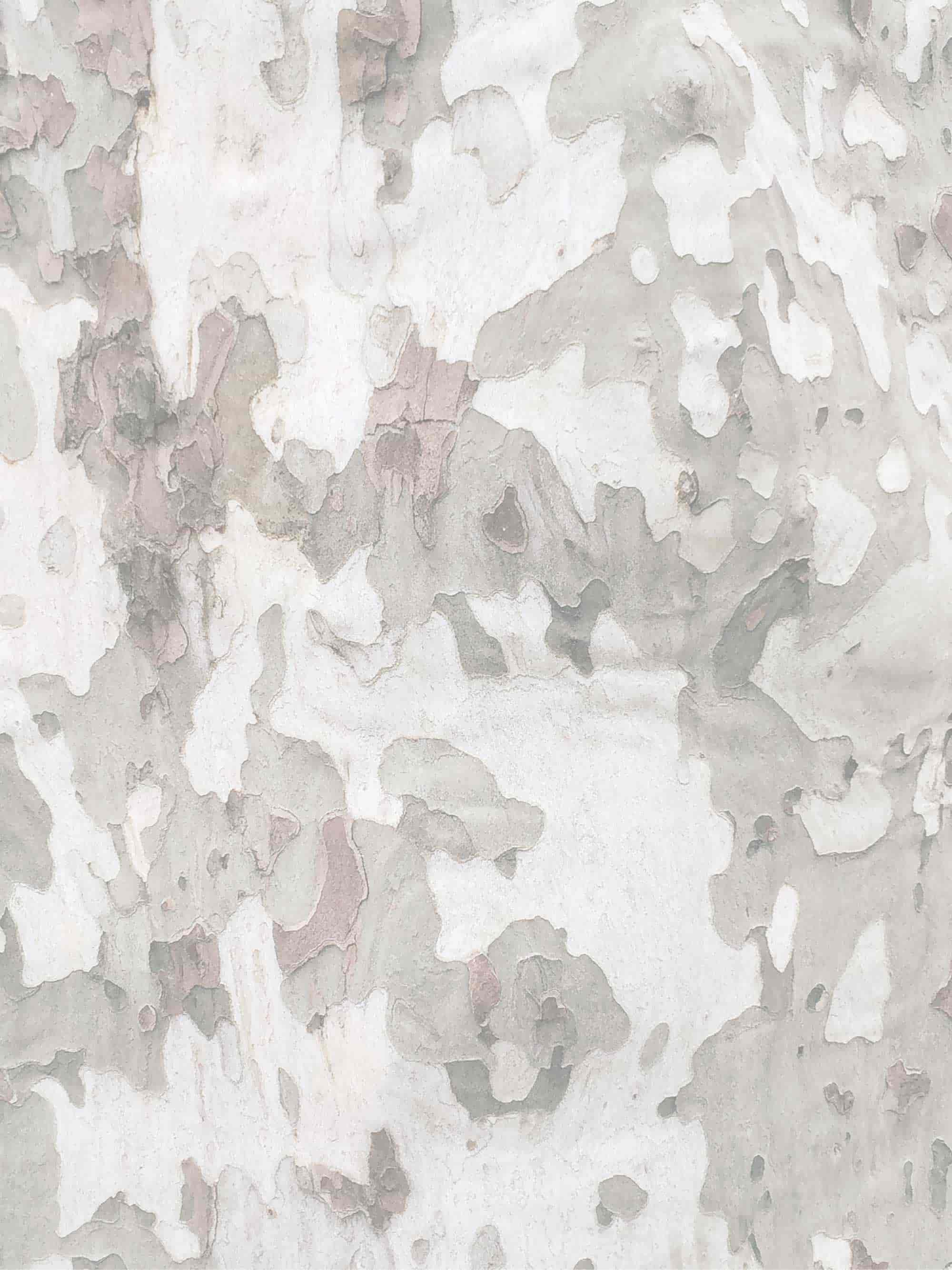 3x4-image-9-half-color.jpg