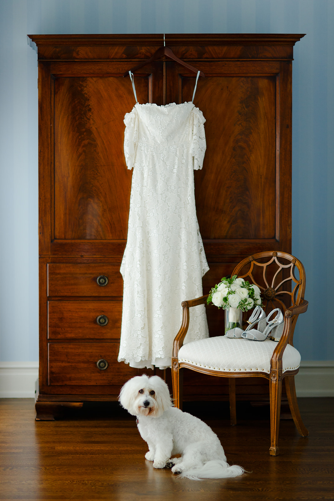 The couple's dog joined for the entire day and popped in and out of photos as he pleased. He posed so perfectly for this photo with the vignette of the bride's gown and accessories.
