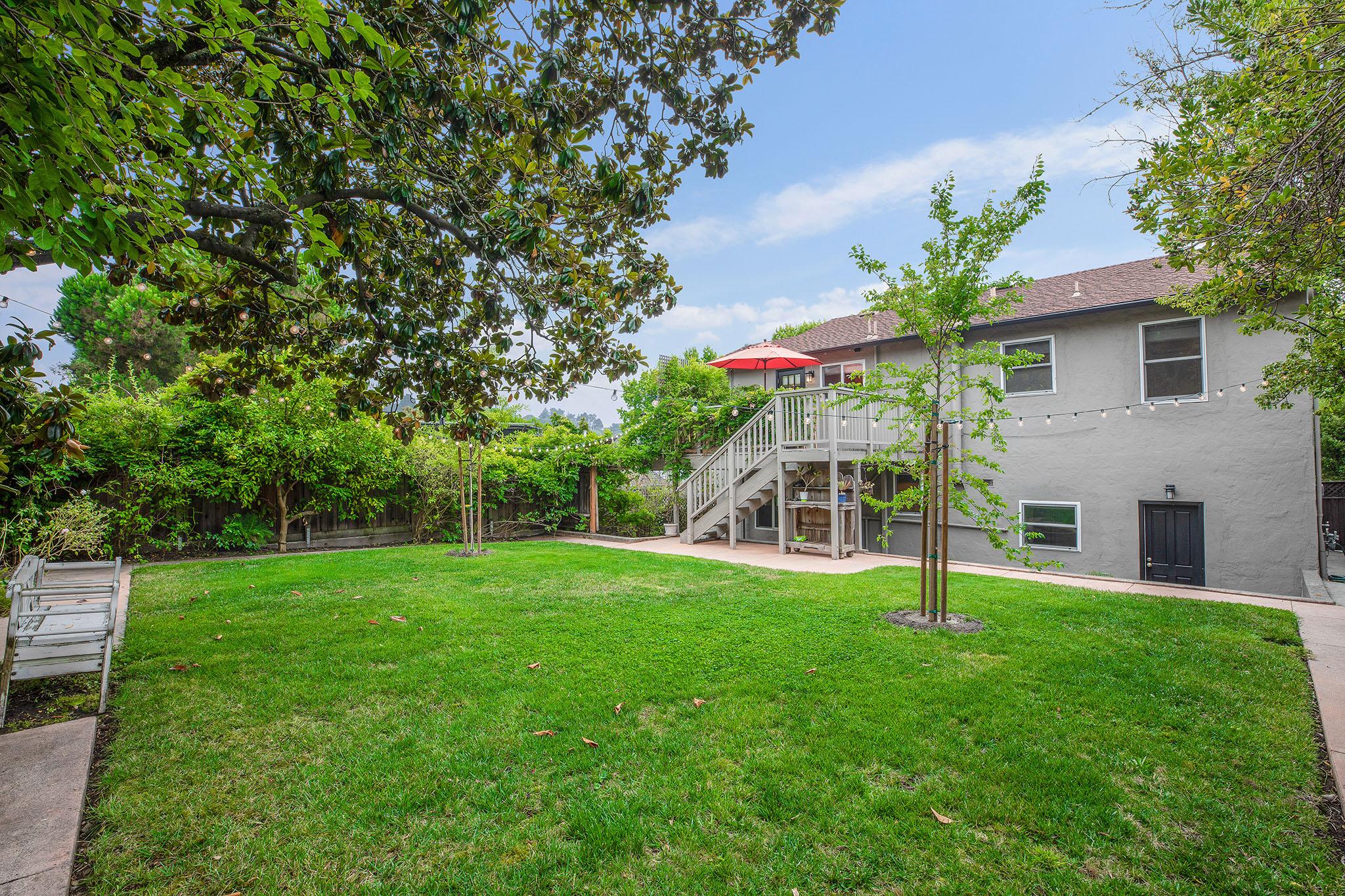 Backyard lawn - 1.jpg