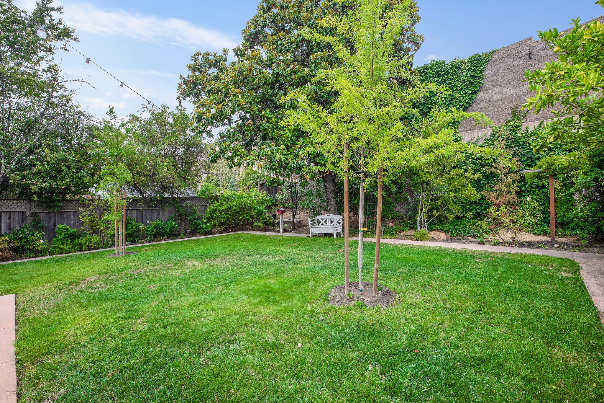 Backyard lawn - 3 to wall.jpg