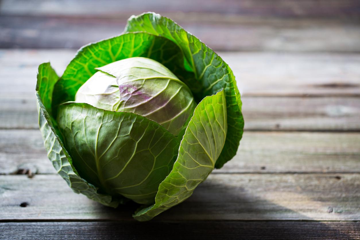 Cabbage%2c Leek & Bacon Soup.jpg