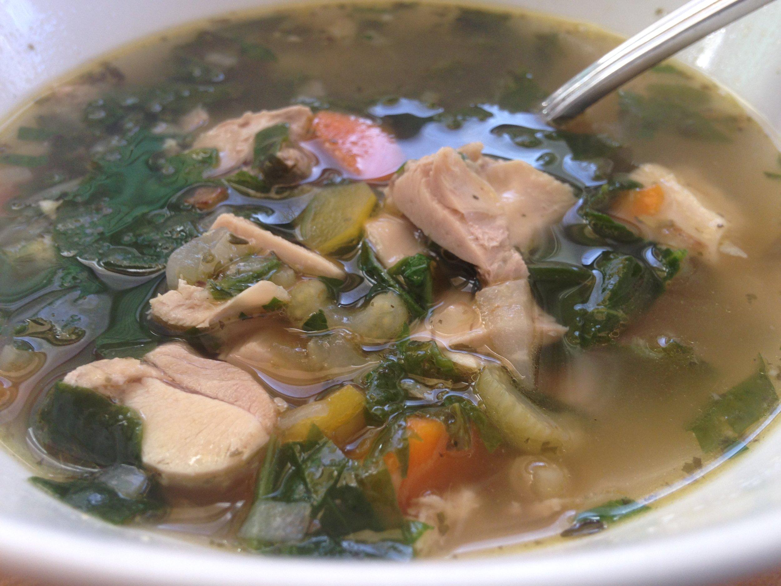 Chicken & Vegetable Soup.JPG