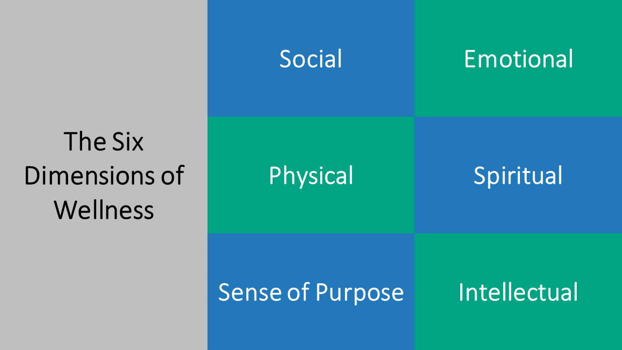 Like all our resident programs, the Benchmark Honors program addresses the six dimensions of wellness.