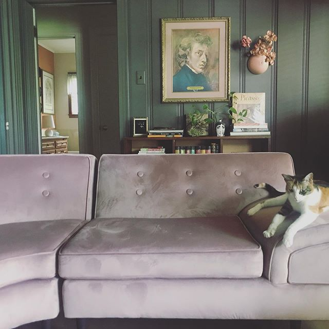 Nothing better than sitting inside a vision. Our midcentury couch was restored by the super talented @witchhousedreams If you have something to be restored, I highly suggest seeing her. #thebellhouselafayette #midcenturymodern