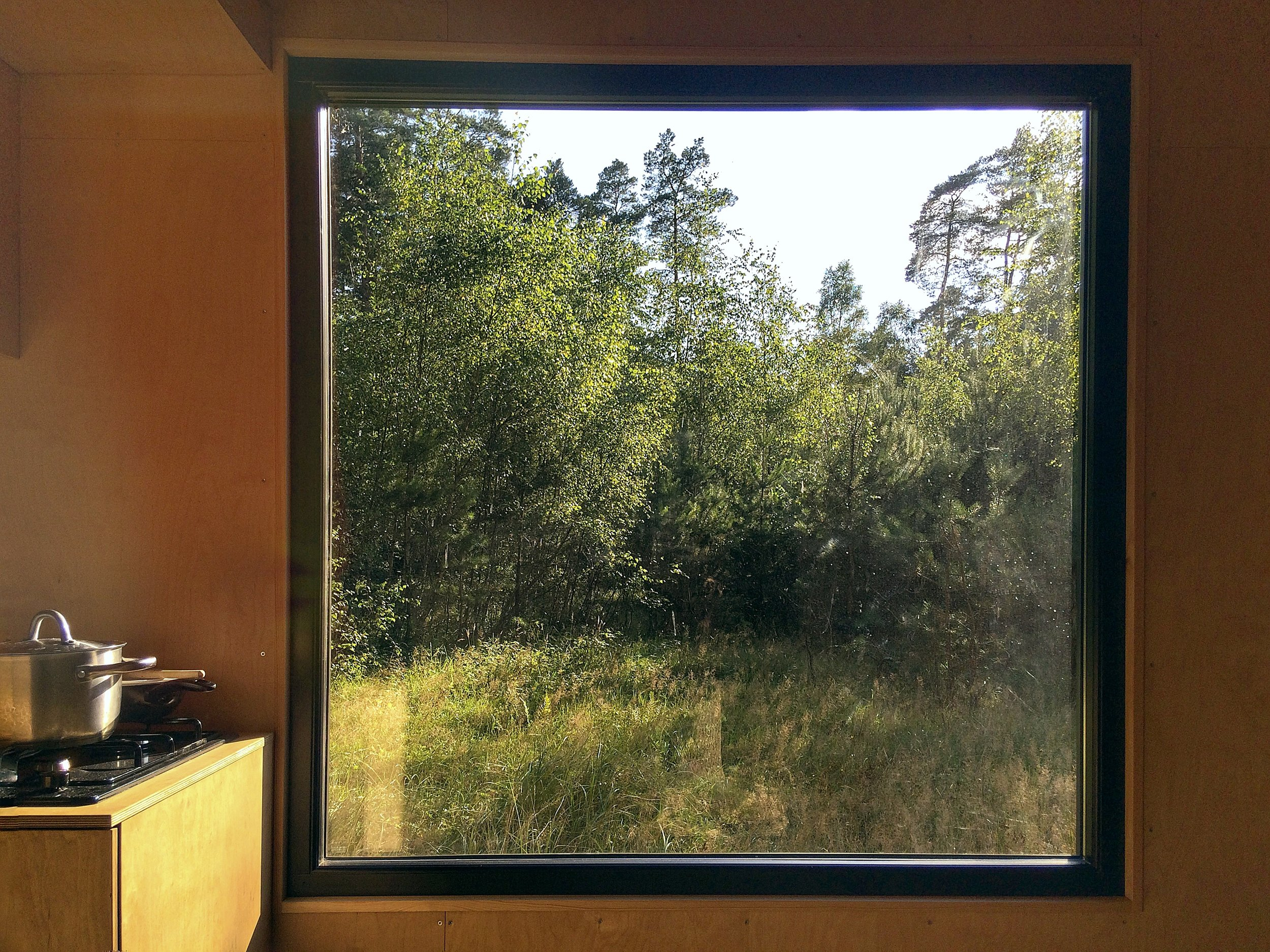 in_living_window2.jpg