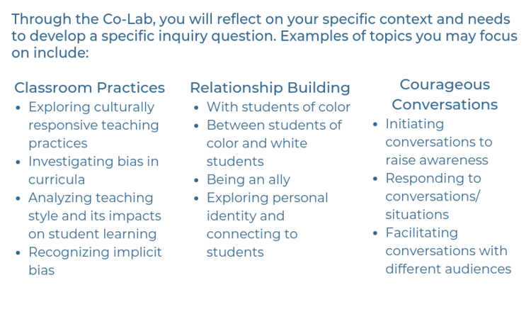 Suburban Educators for Equity Topics.png