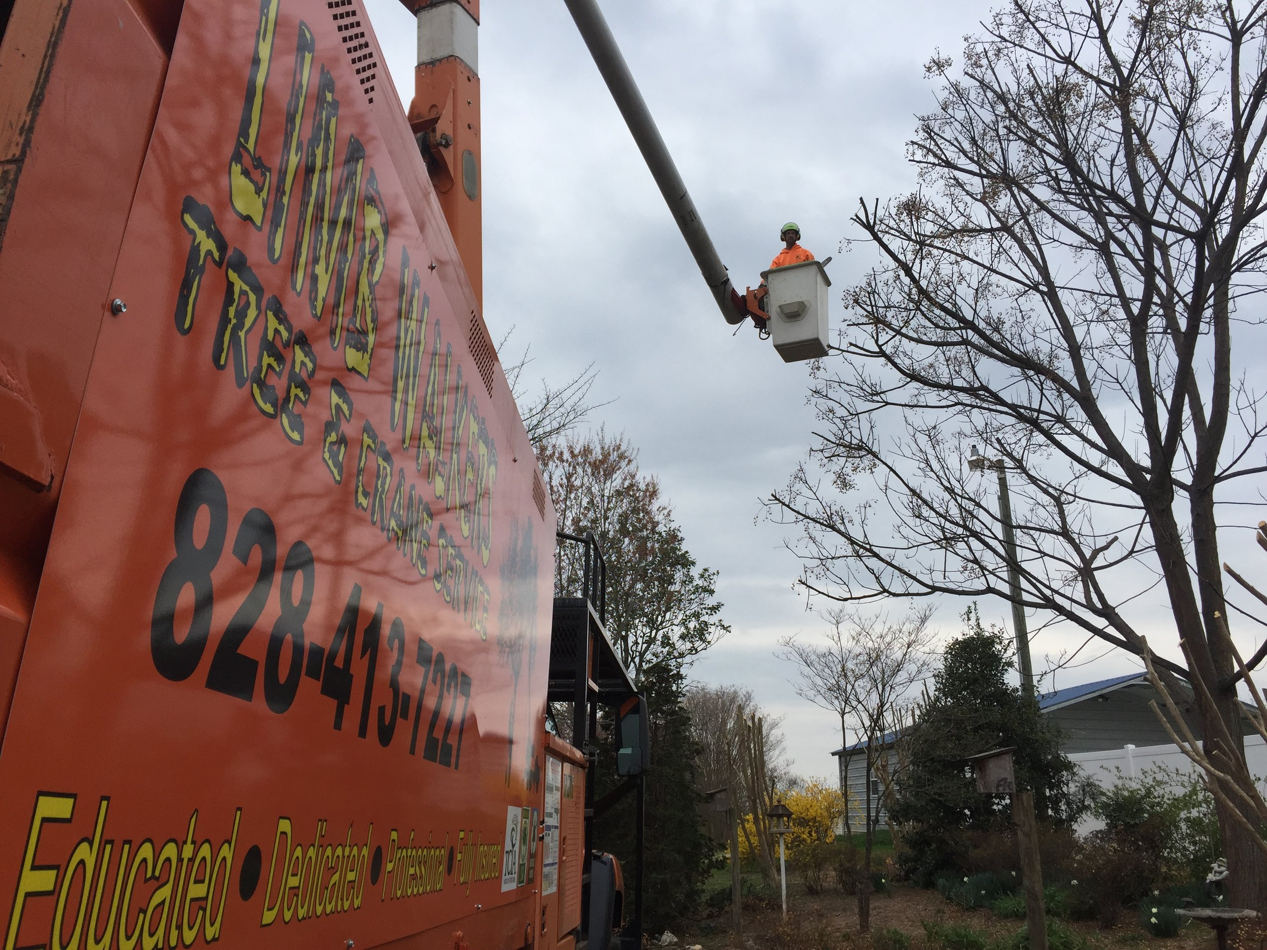 Limbwalkers Tree & Crane Service is based in Morganton, NC and offers a variety of tree services in the surrounding WNC area.