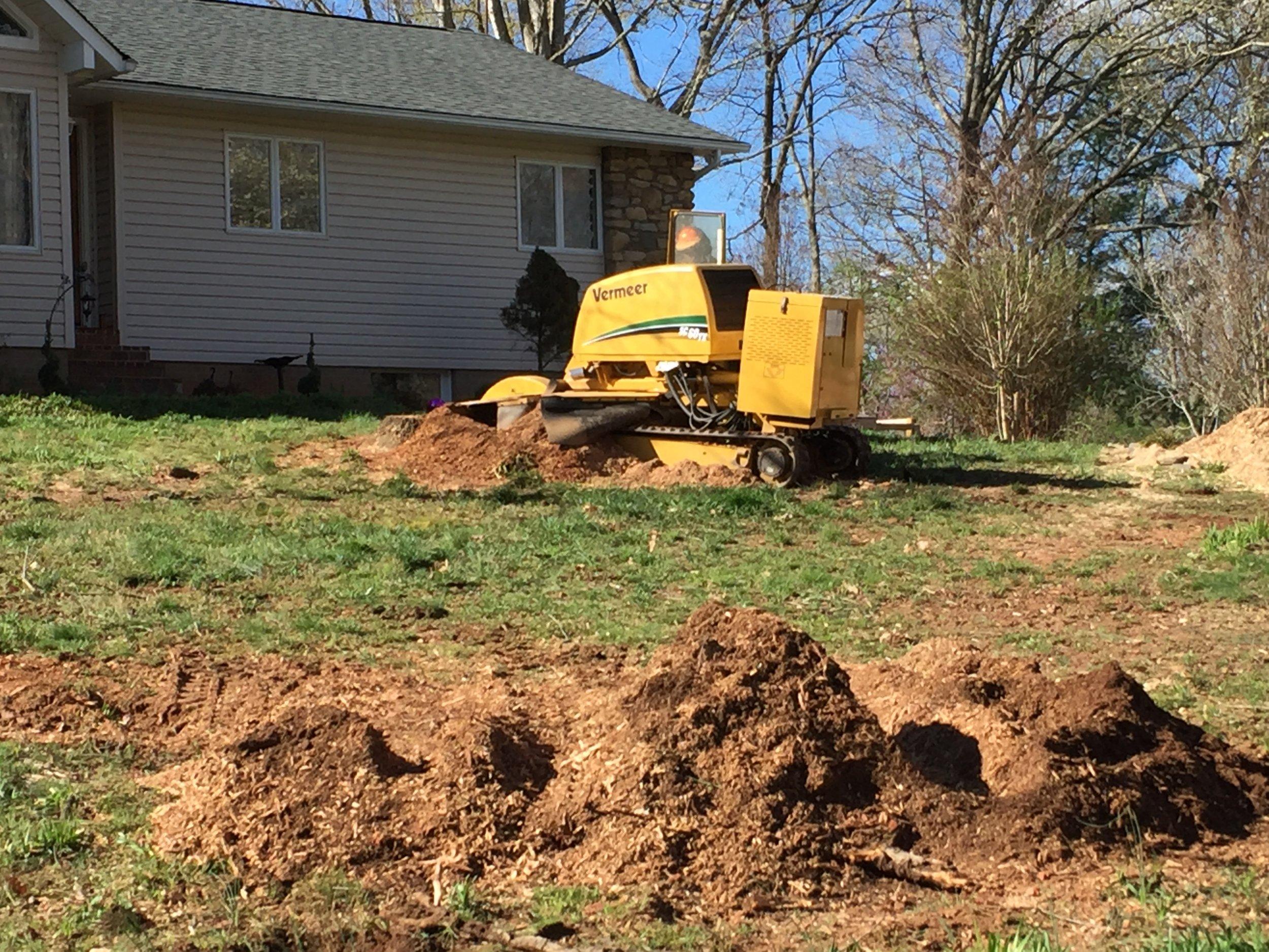 Limbwalkers Tree & Crane grinding some large stumps!!
