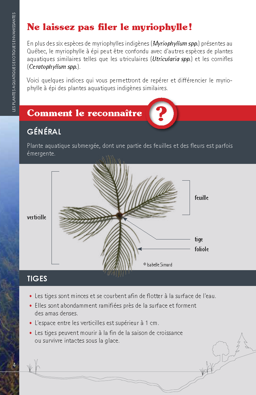 Guide_Myriophylle_FR_Page_04.png