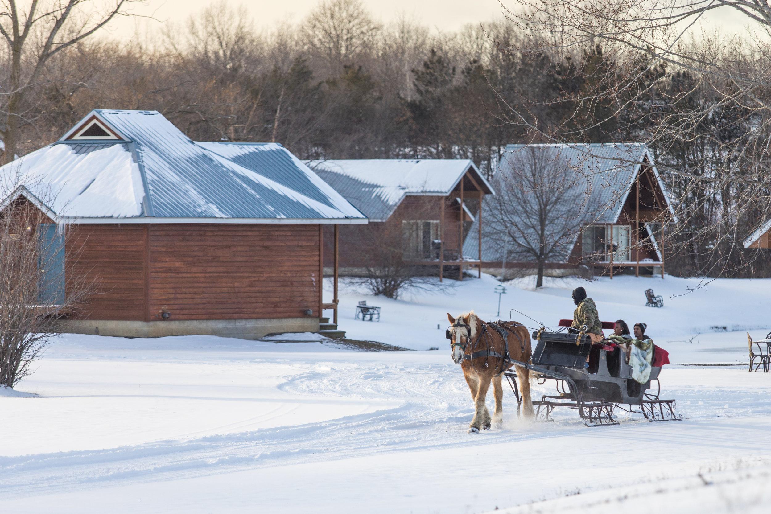 outdoor winter sleigh ride