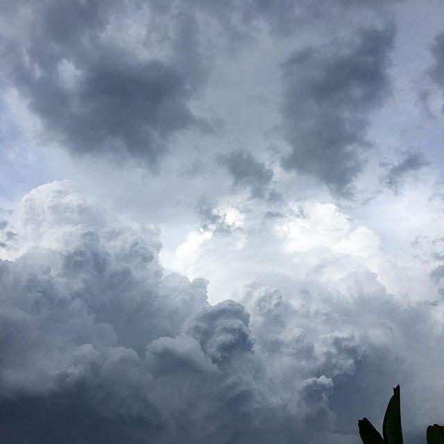 Real Typhoon cloud