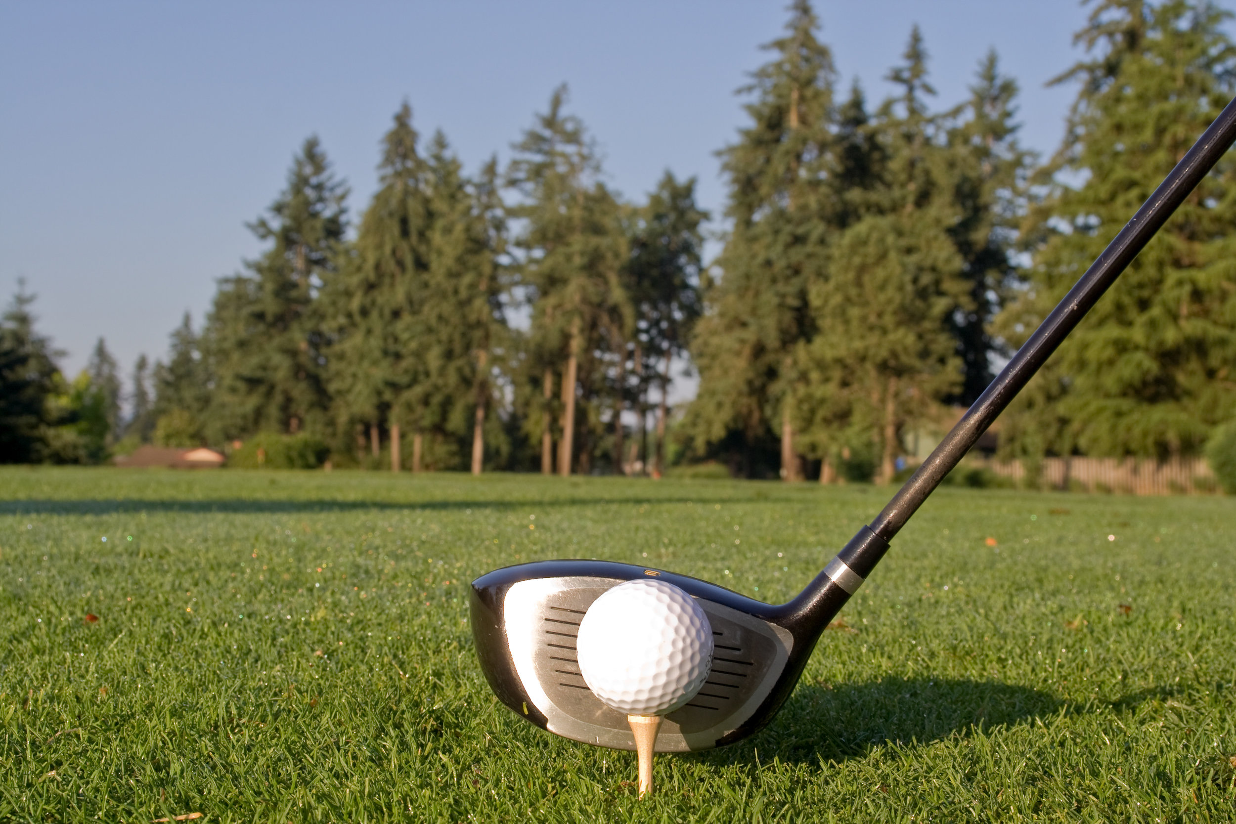 Golf Club & Ball.jpg