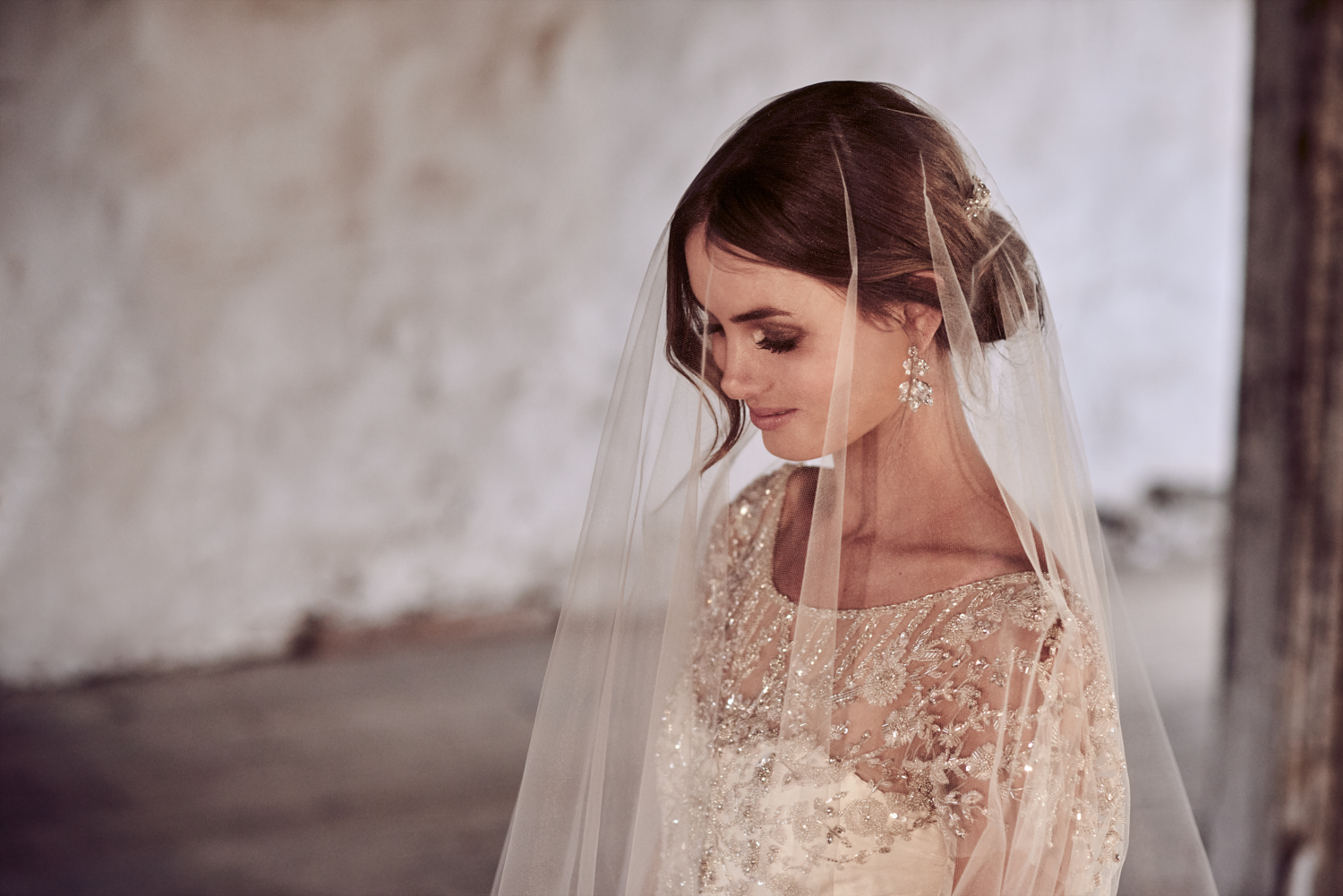 The Adele Dress styled with the Zara plain tulle veil (Chapel Length with Blusher)