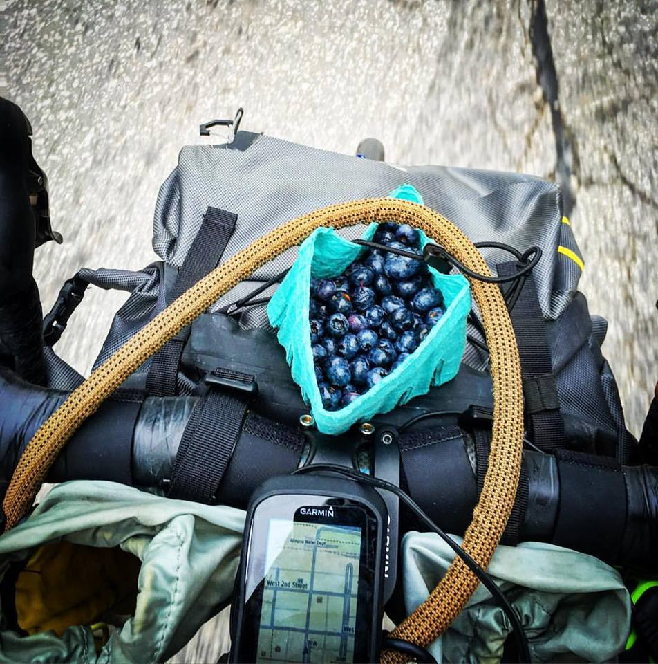 Small bag of blueberries in the handlebars