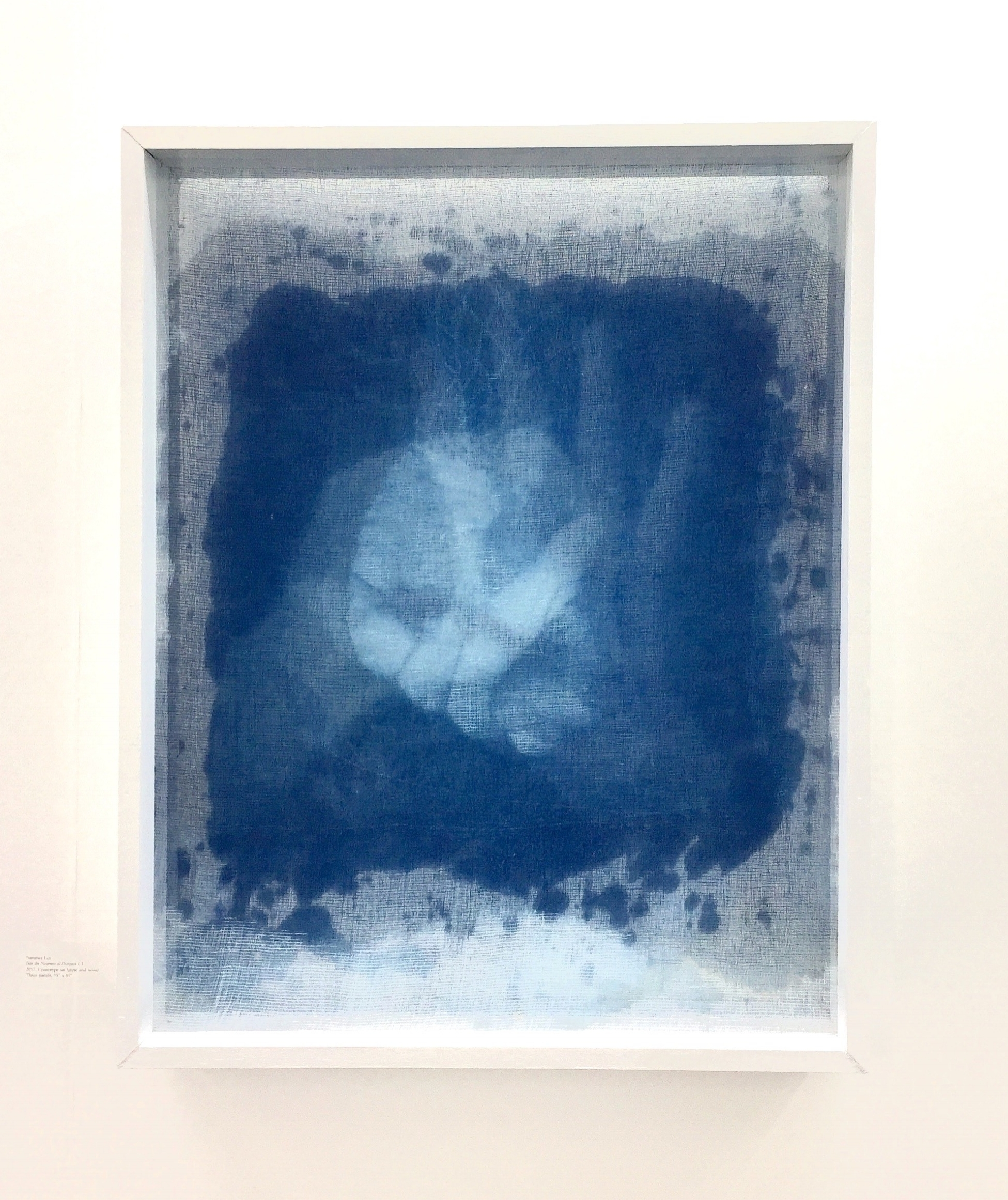 - Image:  Summer Lee, Into the Nearness of Distance #6,  three panels of Cyanotype on fabric mounted on wooden frame.