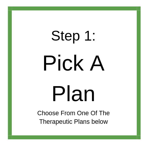 Step 1_ Pick A Plan (1).png