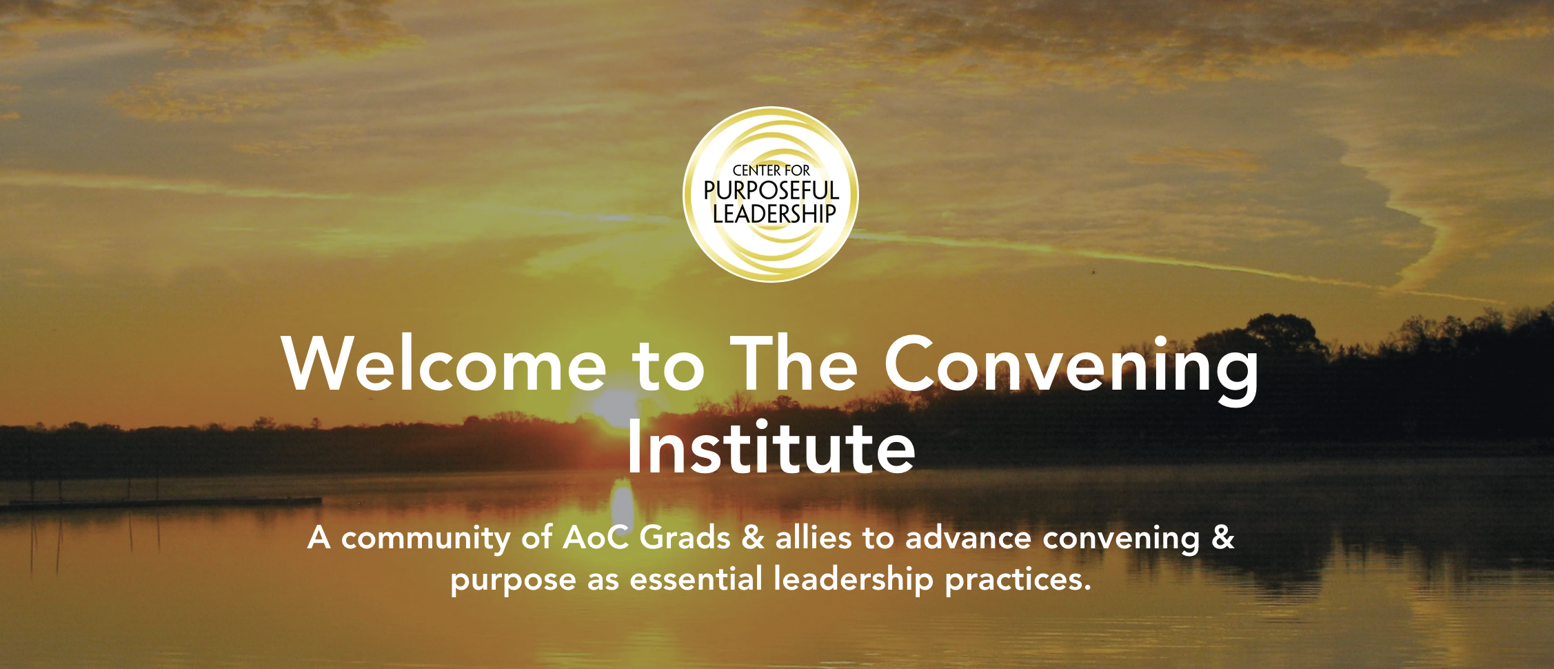 The Convening Institute.png