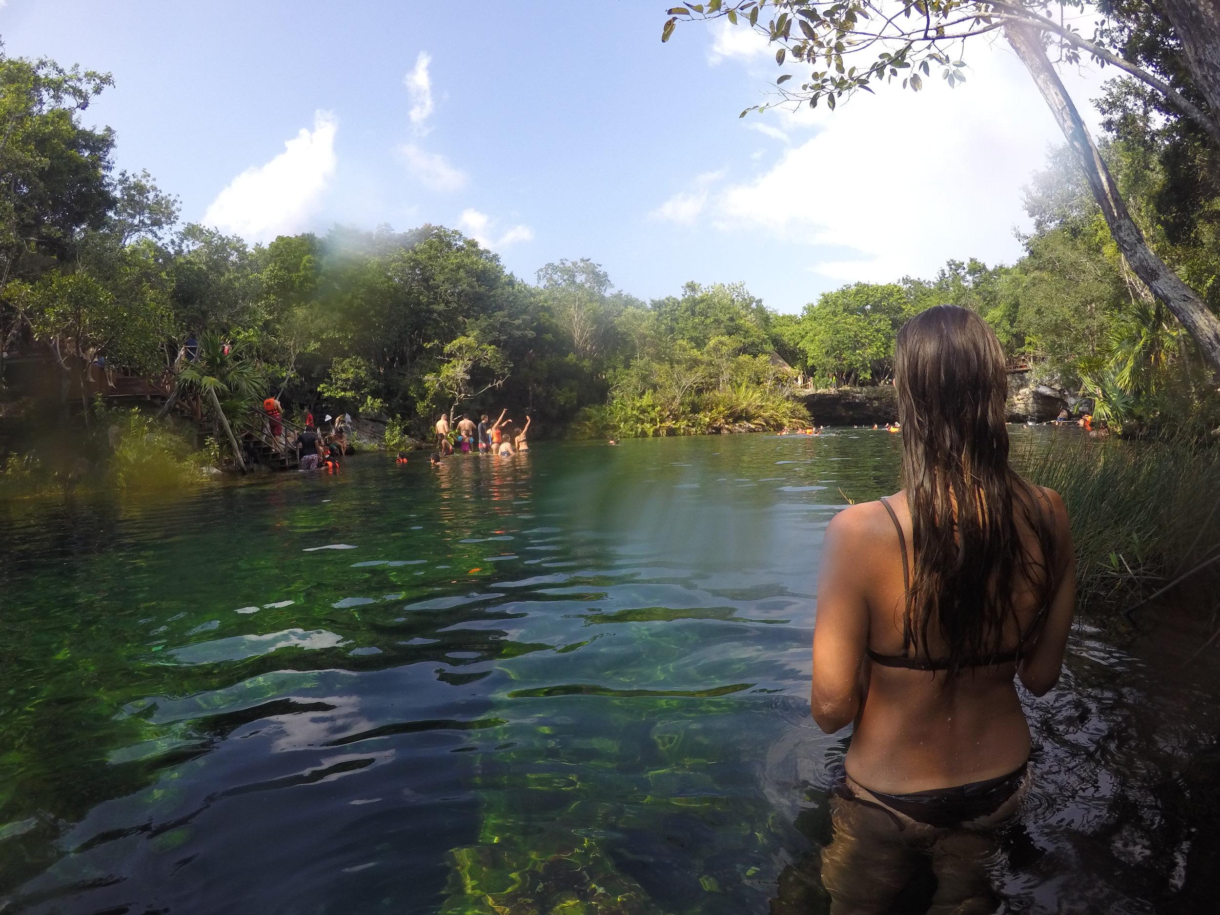 Blurry Garden of Eden- cenote