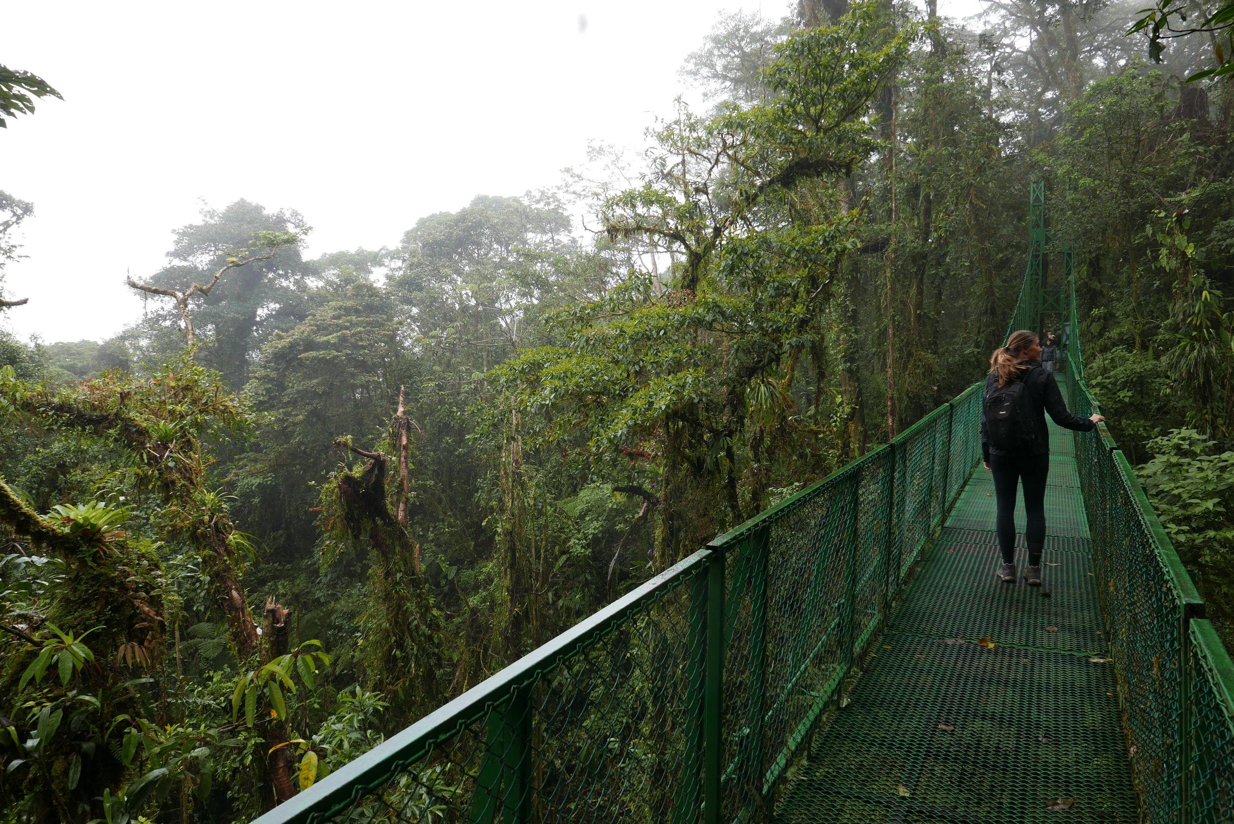 Bridge walking in Monteverde, Costa Rica