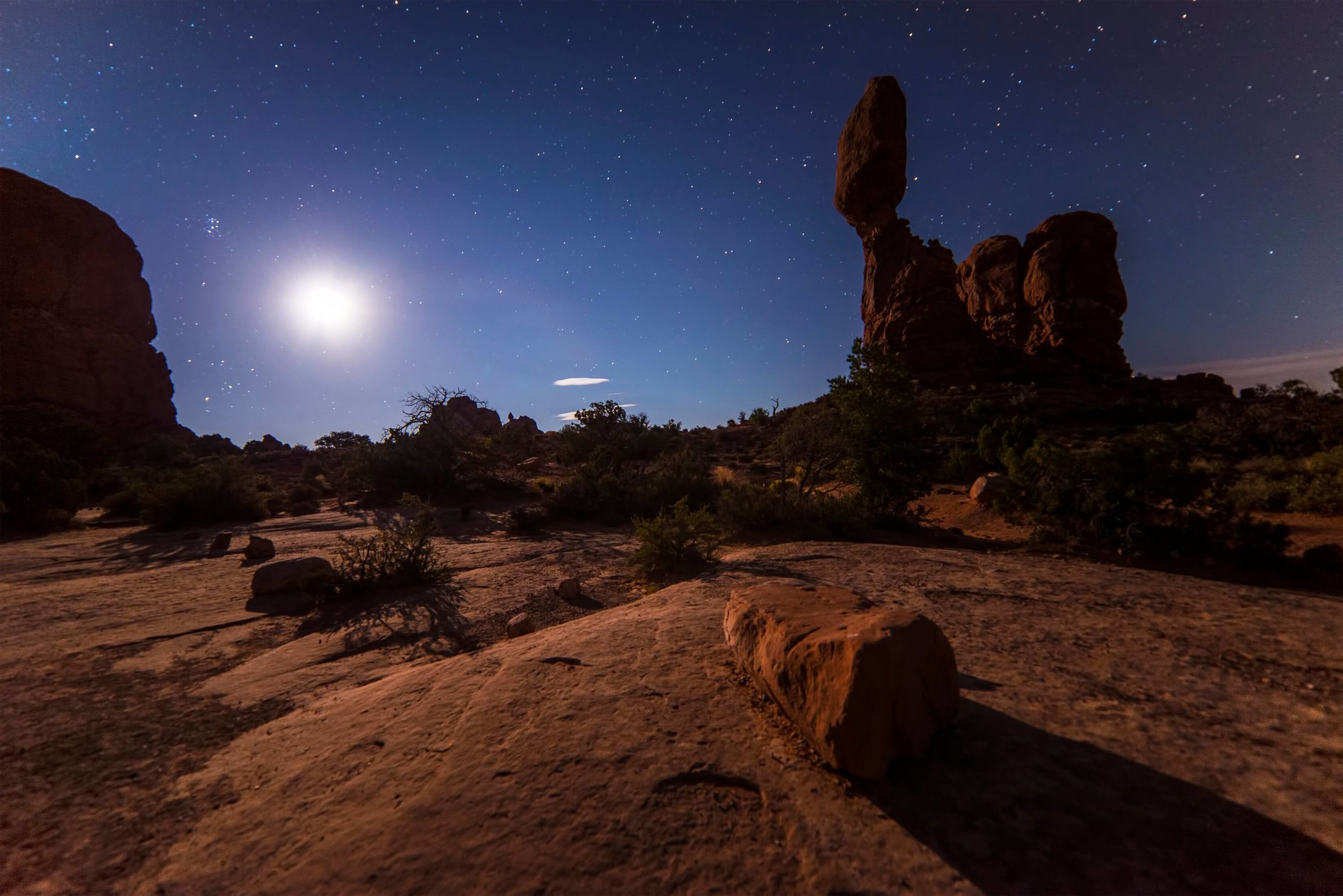 Desert in Moonlight -  Thomas Shellberg