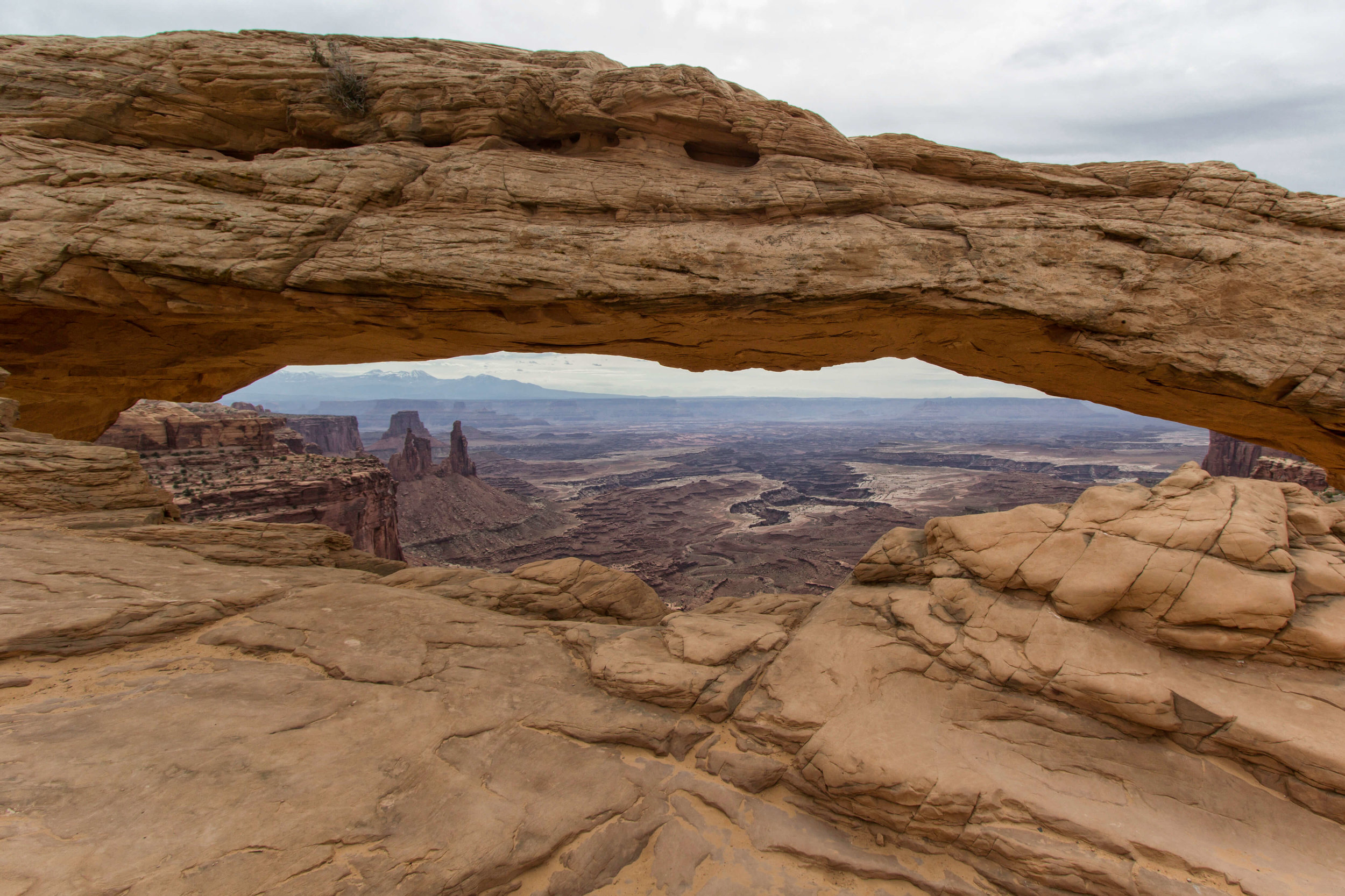 Mesa Arch in Canyonlands - ©️ Nicole Atkins