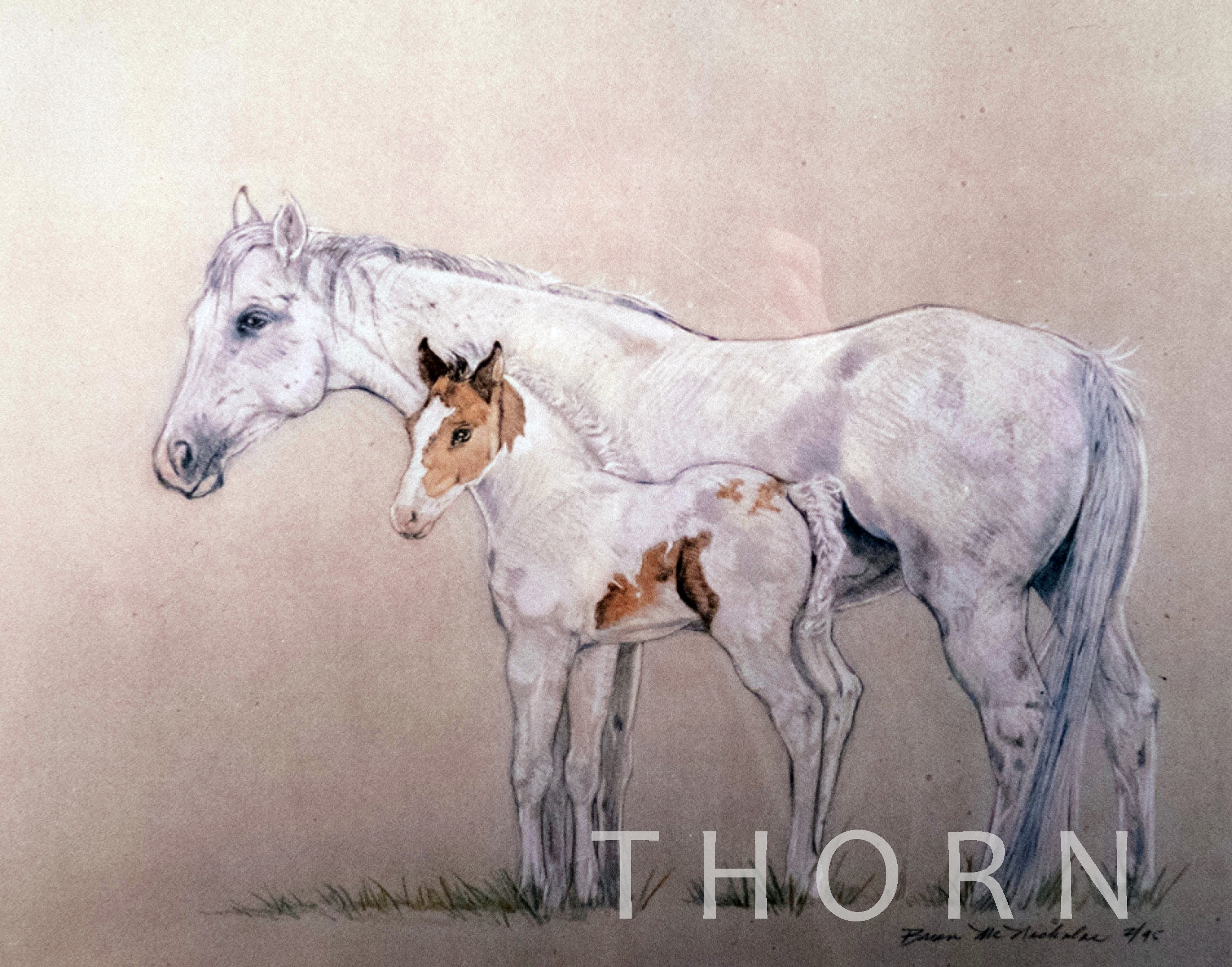 "HORSES LARGE AND SMALL    Click on image for size and material options.   Prints Available From $27 - $310  Original 12""w x 10""h  Artist: Brian McNicholas"