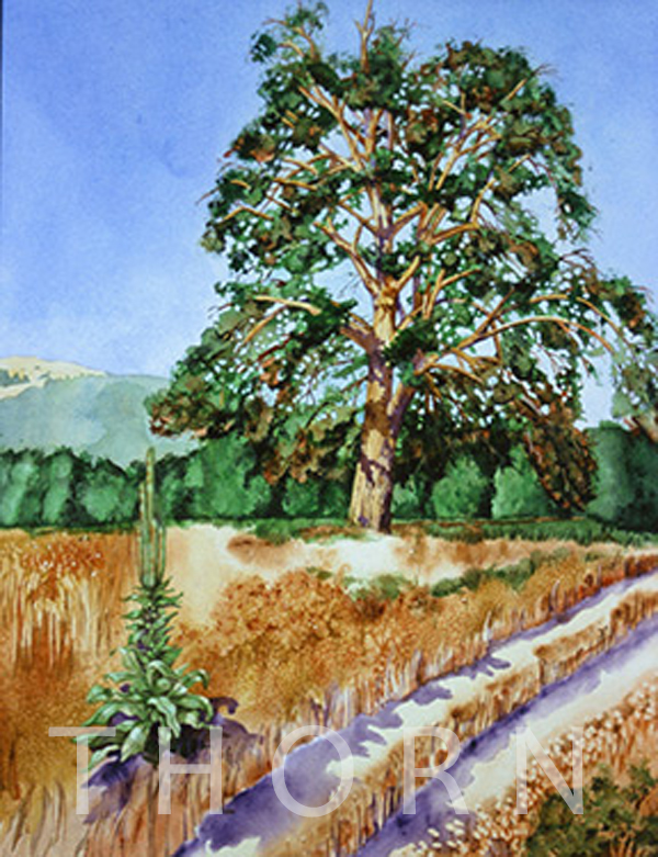 "RIVER PATH    Click on image for size and material options.   Prints Available From $36 - $345  Watercolor, 19""w x 25""h  Original Art For Sale $1,200  2002  Artist: Karen Thornberg"
