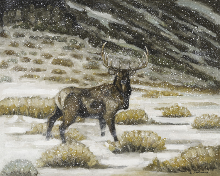 "ELK IN A SNOW STORM    Click on image for size and material options.   Prints Available From $27 - $345  Original Oil, 20""w x 16 ""h  Artist: Brian McNicholas"