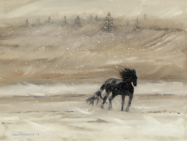 "HORSE IN A SNOW STORM    Click on image for size and material options.   Prints Available From $45 - $195  Oil 2009  Original 14""w x 11""h  Artist: Brian McNicholas"