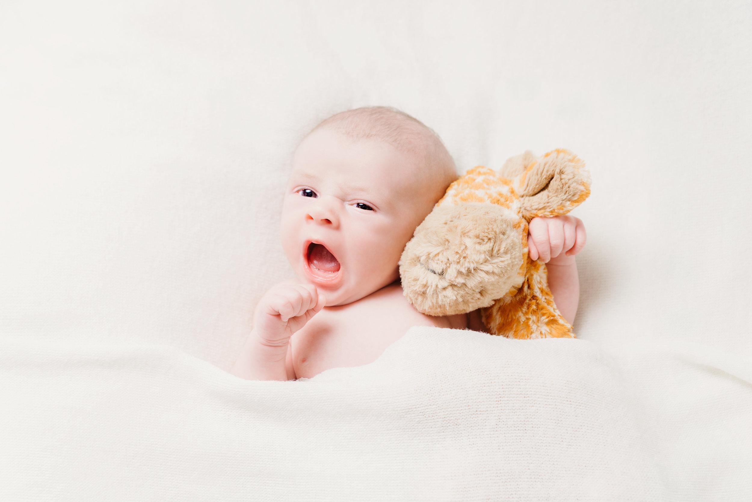 Newborns - Click here…