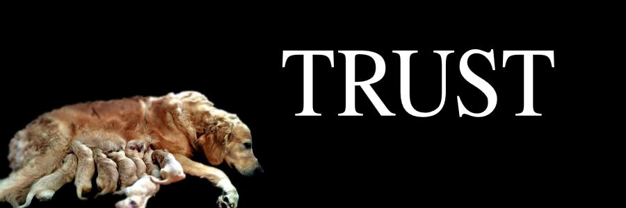 Trust 1.png