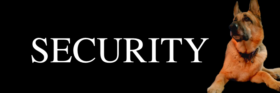 Merlin Security.png