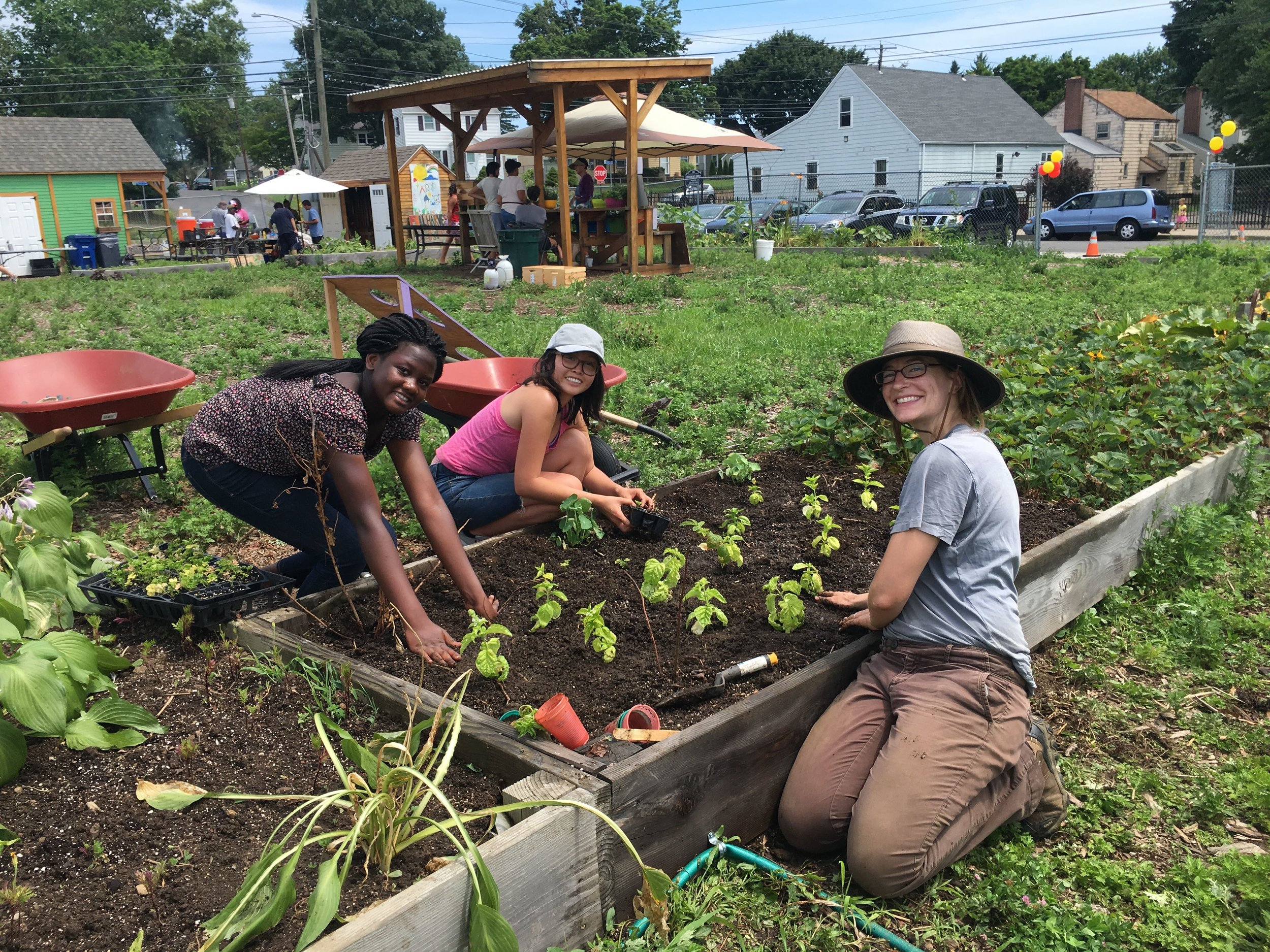 Reservoir Community Farm — Green Village Initiative