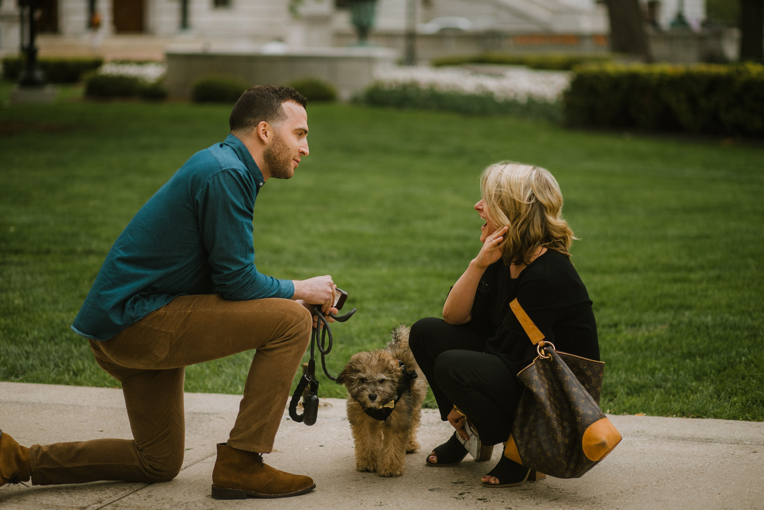 E&D-Surprise Proposal in Madison-1.jpg