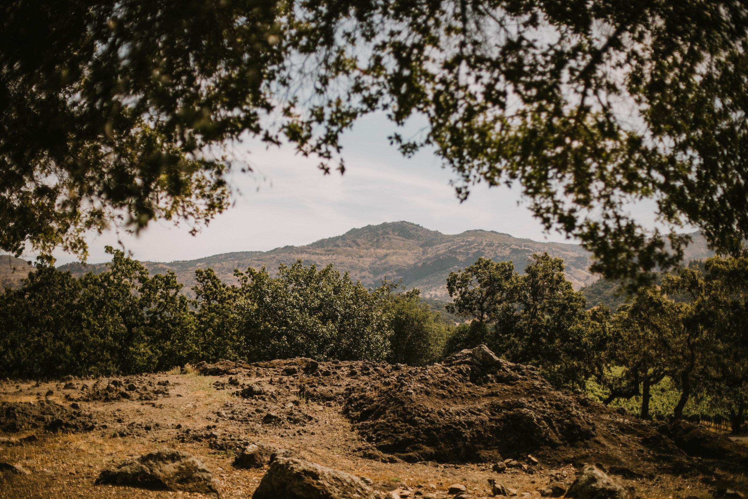 Big Sur, California Trip + Wine Country