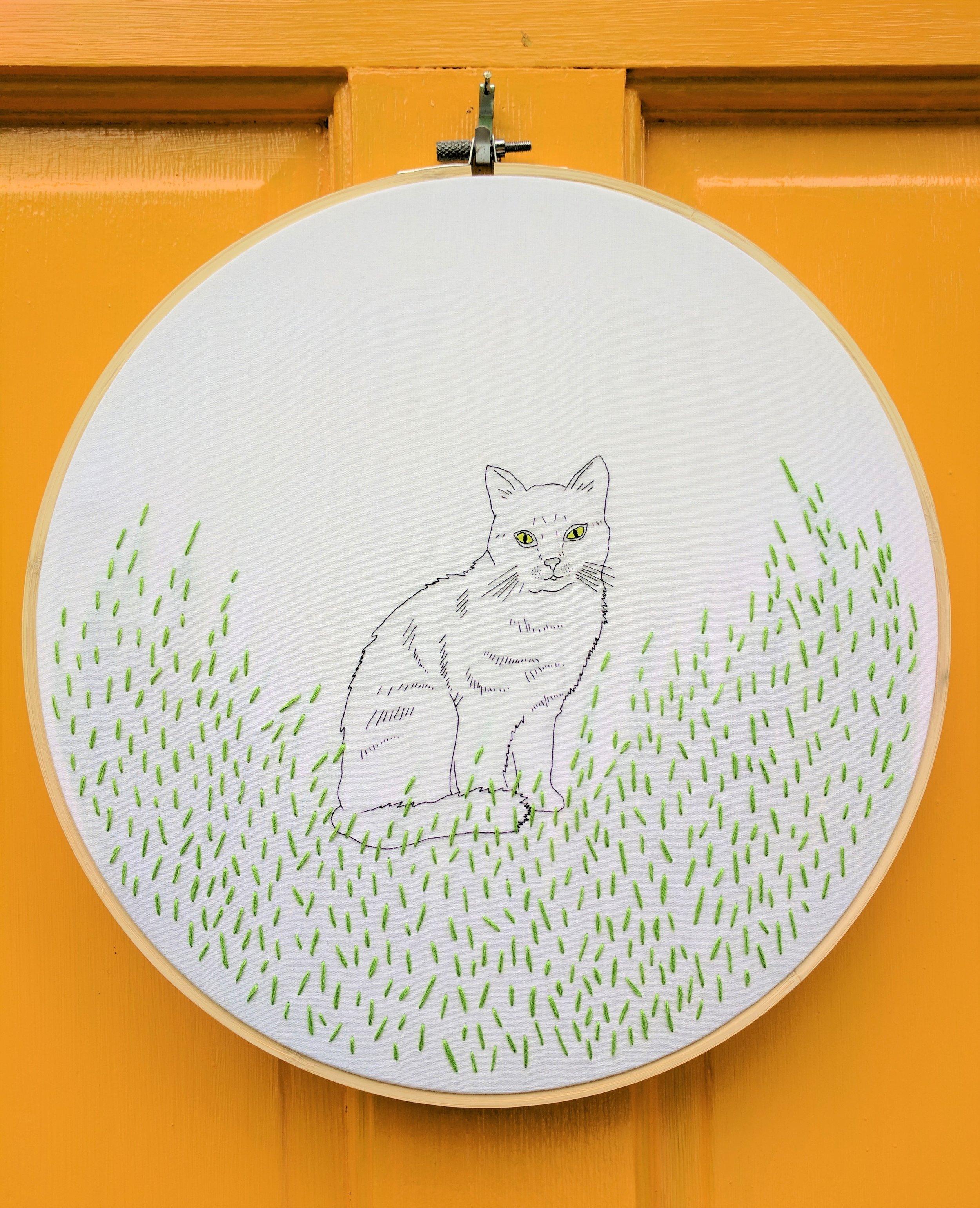Cat cropped 2.jpg