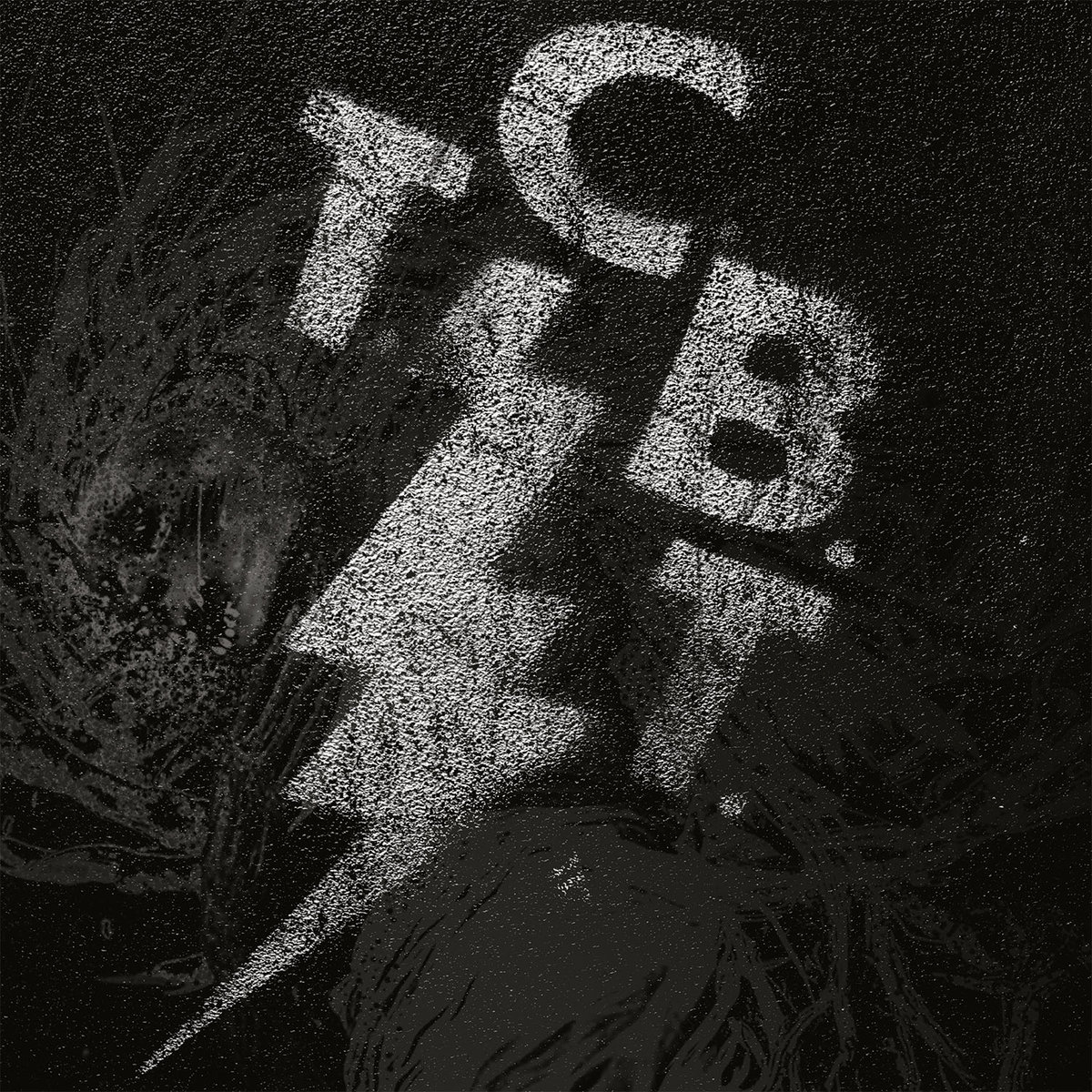tcbt album.jpg