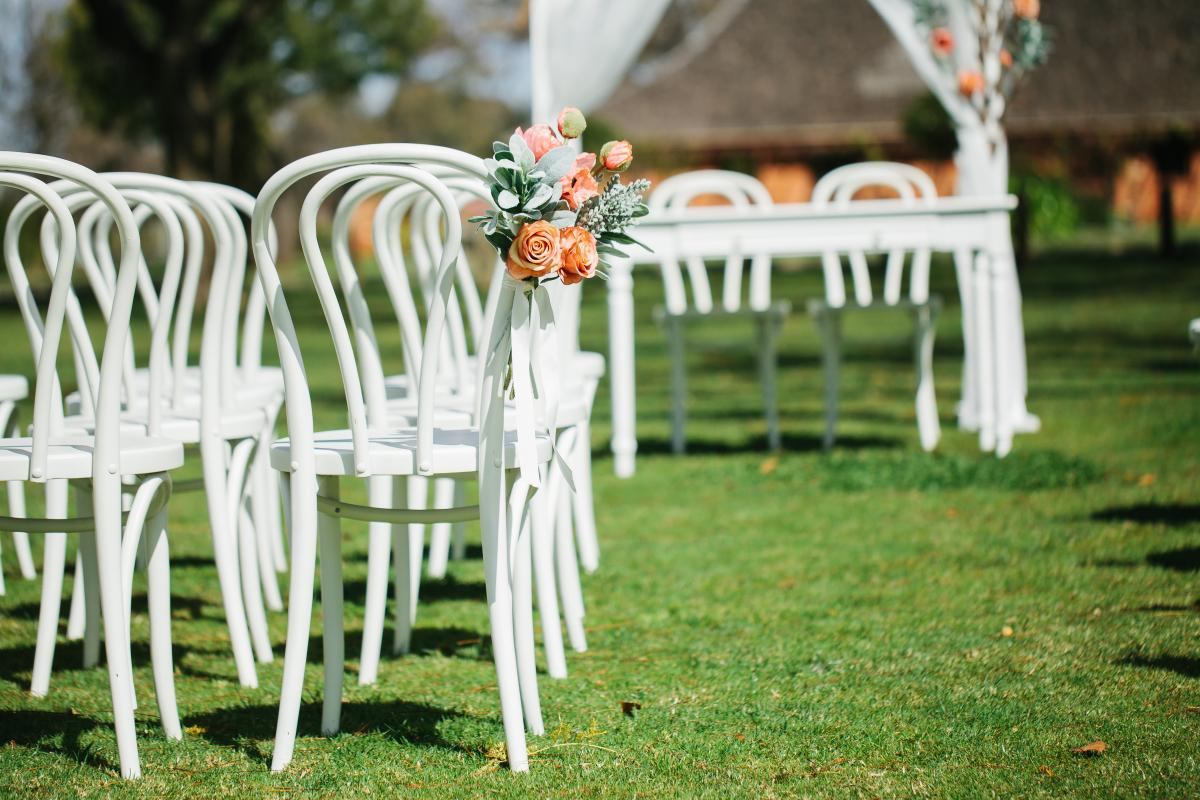 Bentwood chair - white.jpg
