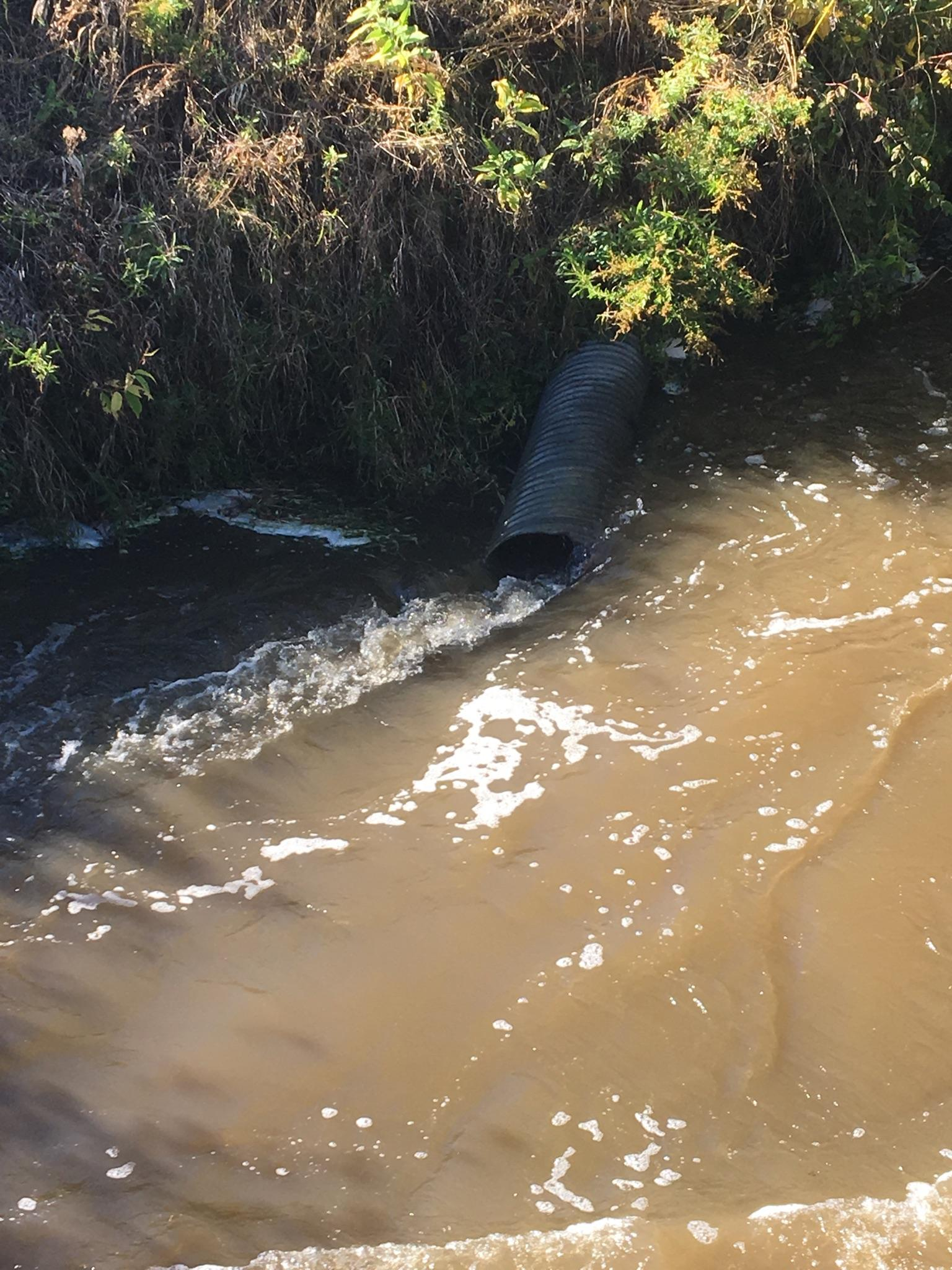 Drainage Pipe to Colborne Creek.jpg
