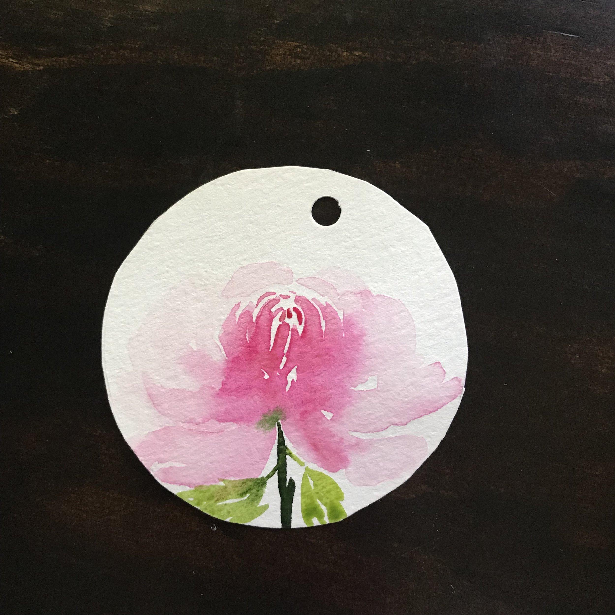 Chrysanthemum 4.jpg