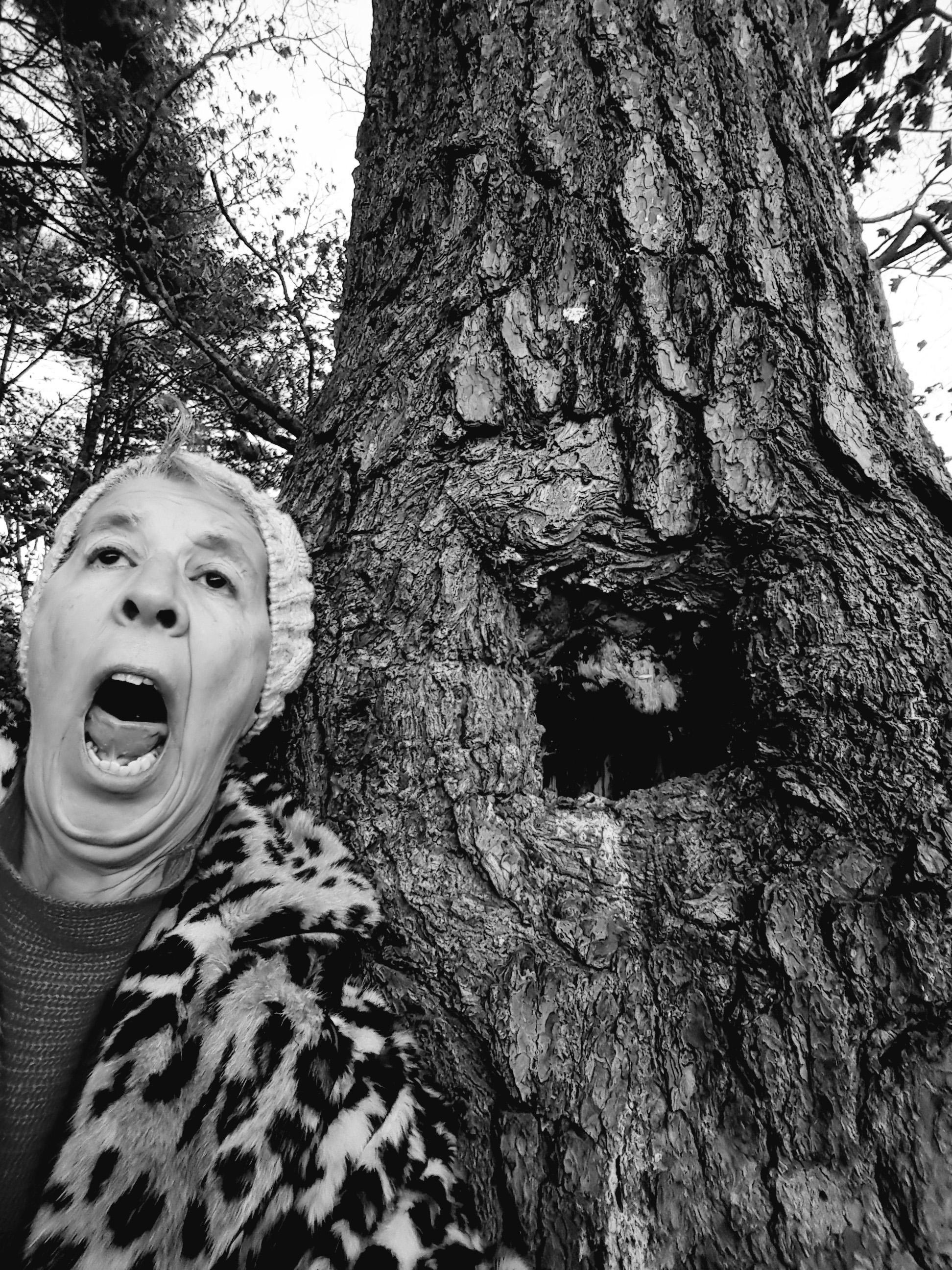 Amor de la Forêt #1