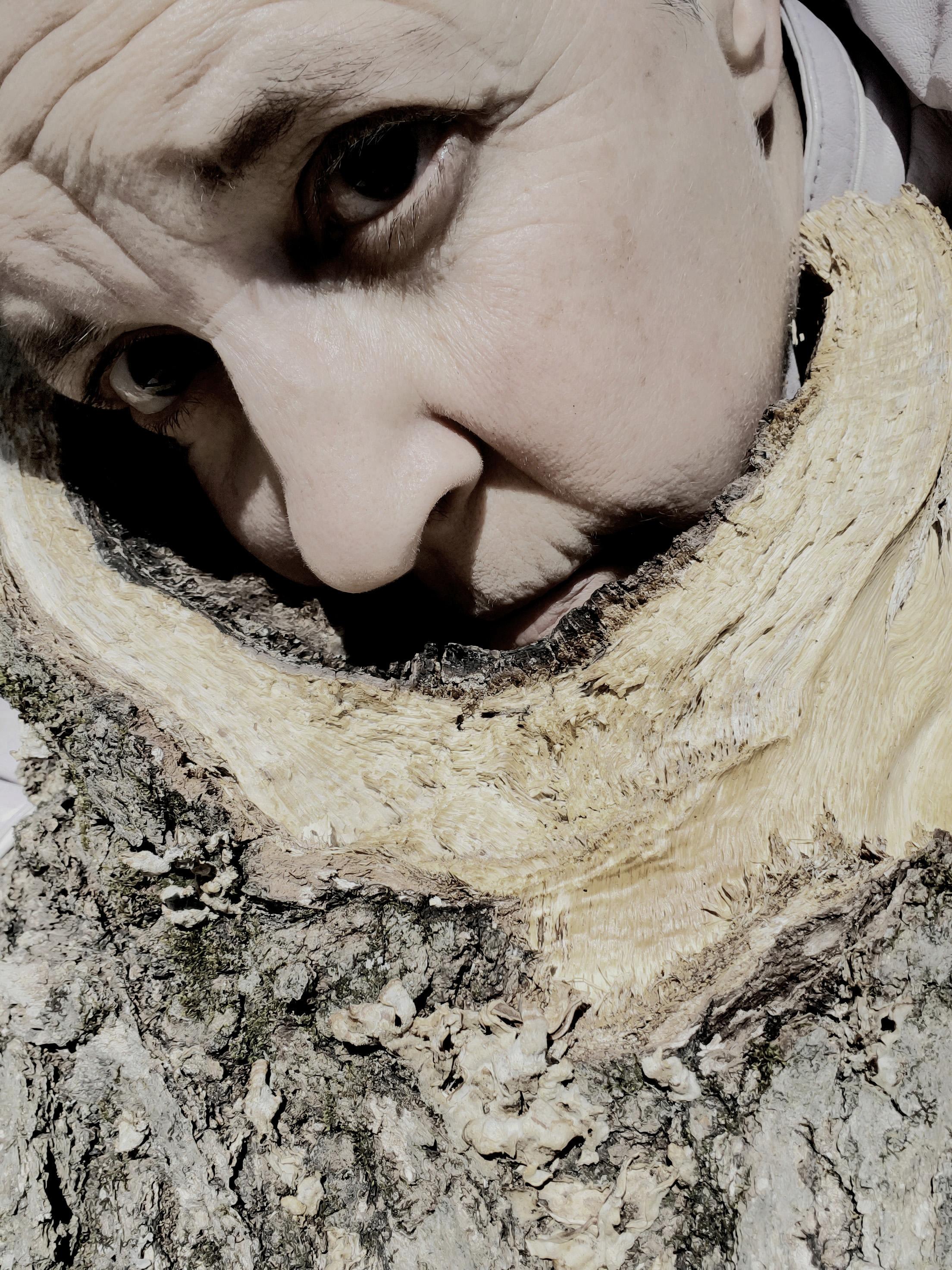 Amor de la Forêt #3