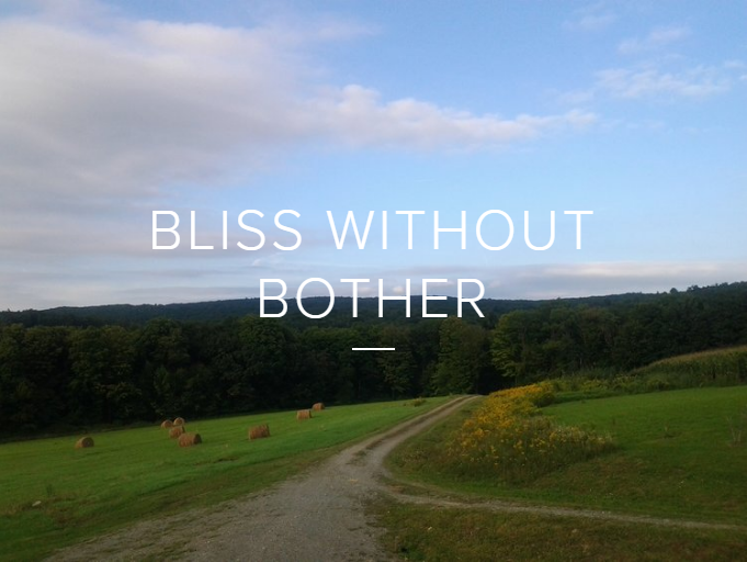 Bliss Without Bother Logo.png