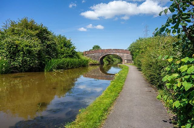 Had a lovely walk the other day down the canal in Chester, great to see so much wildlife there 🌿🌼🌳 . . . #chester #cheshire #canal #nature #country #rural #wildlife #beautiful #bridge #summer #sunshine #city #peaceful #calm #instadaily #instagood