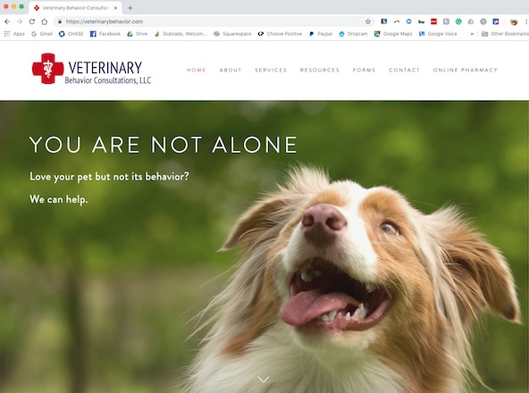 website design for dog trainers