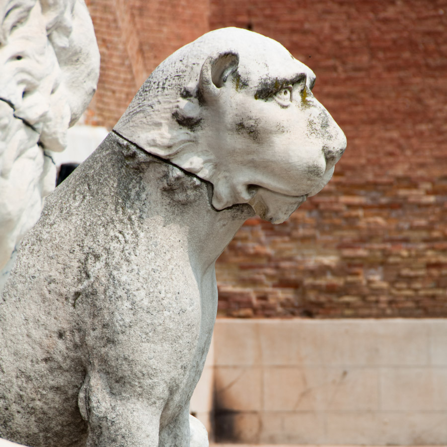 Un-des-lions-qui-gardent-la-porte-de-l'Arsenal