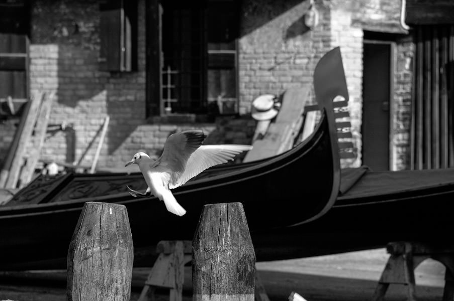 Photo-Tour-Venice-gondola.jpg