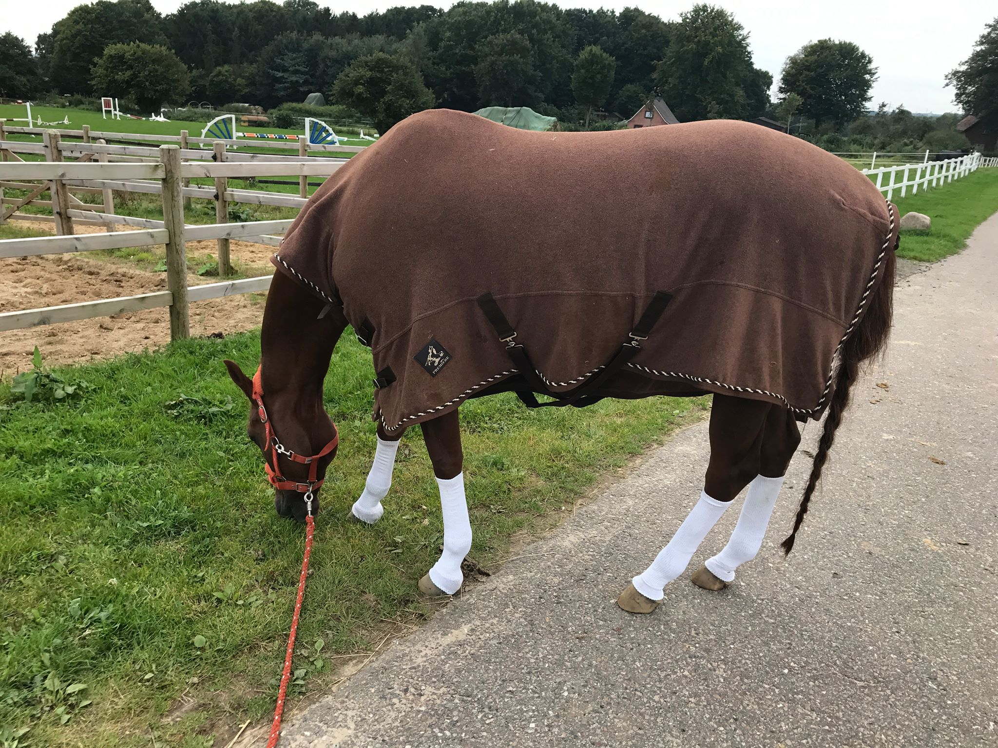 Cecilia and her mare.jpg