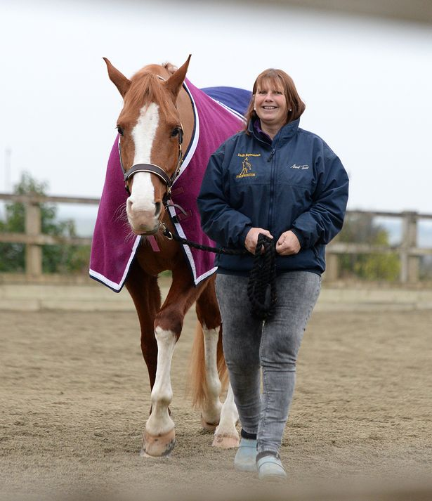 Julie-Payne-is-hoping-to-qualify-for-the-paralympic-games-in-Brazil-with-her-horse-Pandora.jpg