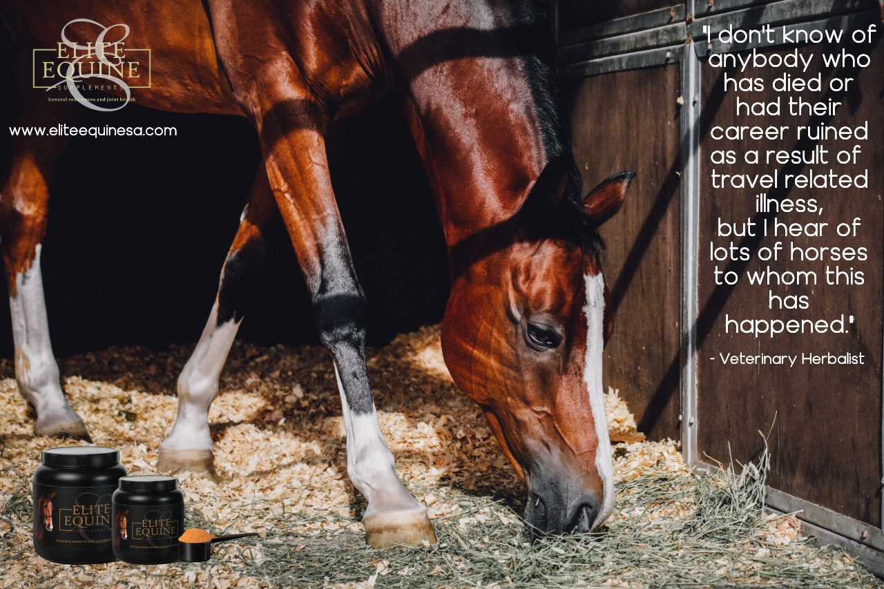 WHAT IS ELITE EQUINE? - Elite Equine is formulated from 100% Rosa Canina powder. The powder is produced from the Rosa Canina plant which grows wild in the rich soils of Lesotho, and is harvested by hand.It is inherently an anti-inflammatory, a powerful antioxidant and a rich source of vitamin C. Rosehip has been scientifically tested and has shown itself to improve general health, protect cartilage, reduce inflammation and promote general performance in horses.Elite Equine is specifically formulated to support the general robustness and joint health of your horse. The product is 100% organic and certified with various regulatory bodies, including EU, EU Organic, USDA, BCS-Kiwa and Rainforest Alliance.